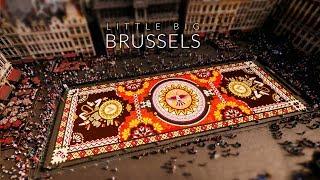 Little Big Brussels