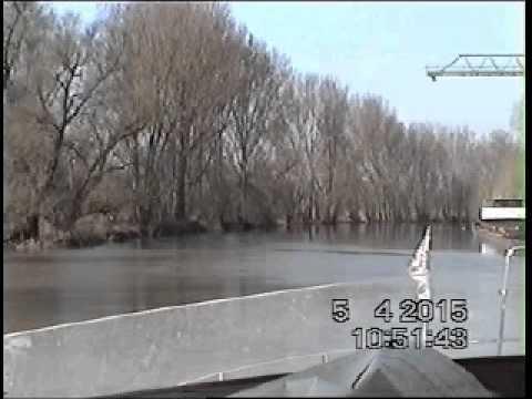 Lampertheimer Altrhein Bis Rhein Youtube