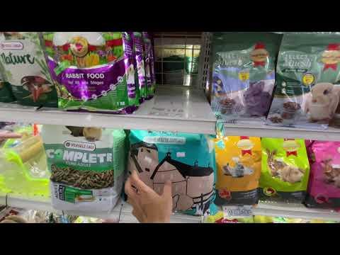 ร้าน Woody Shop ร้านขายอุปกรณ์และอาหารกระต่าย และสัตว์ฟันแทะ Rodents