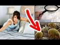 Pon bicarbonato de sodio en tu colchón, impresionante lo que sucede - LIMPIEZA DE COLCHONES