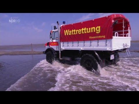 NaturNah - SOS im Wattenmeer [Doku HD]