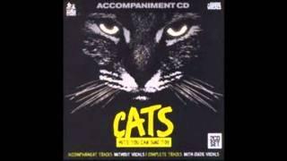 Cats Karaoke- Skimbleshanks the Railway cat