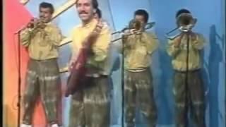 Los Gatos Bravos - El Sambunango teleño