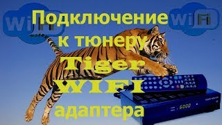Підключення до тюнера Tiger WIFI адаптера