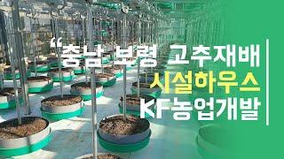 고추재배는 식물공장용 소형 양액기로 재배!! (feat…