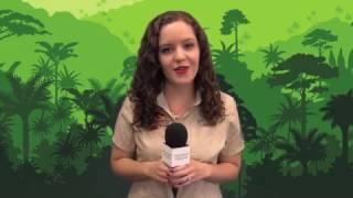 Orlando Health News Review, Episode 168