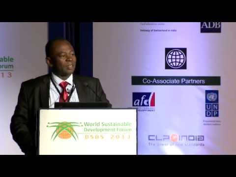 Mr Mahama Kappiah, ECOWAS: West Africa has a large potential for renewable energy - DSDS 2013
