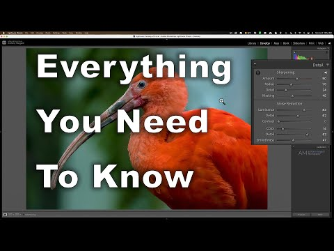 In Other News: Sharpening and NR in Lightroom, portrait lighting, landscape camera settings & more