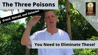 Transforming The Three Poisons: Greed, Hatred, and Delusion - (Eliminate these!)