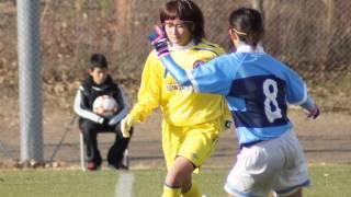 第22回全日本大学女子サッカー選手権大会