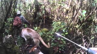 Big Island Pig Hunting - Load
