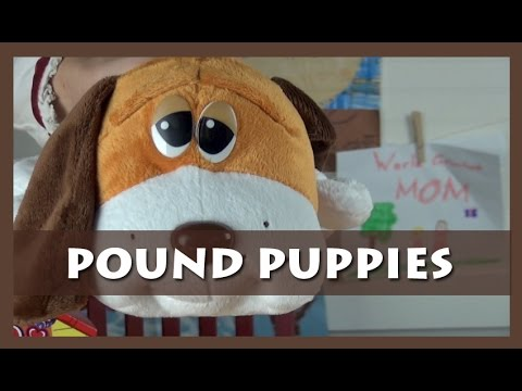 BG Toy Review: Pound Puppies Stuffed Animals