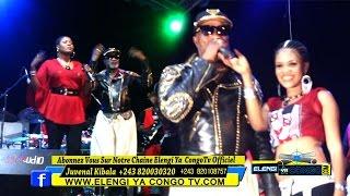 Exclusivité : Concert Koffi Olomide A Kitambo Botala Niveau Ba Fingi Zacharie Babaswe