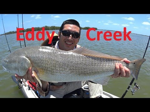 Mosquito Lagoon Eddy Creek