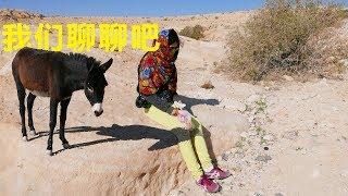 【约旦vlog】63.i-中国小夫妻徒步沙漠并与当地动物亲切交谈