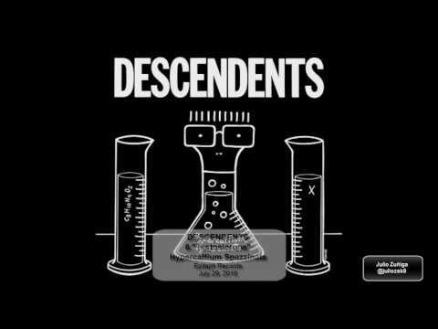 DESCENDENTS - Hypercaffium Spazzinate - Full Album 2016