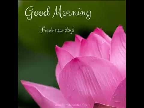 Prem Kumar 2299 good morning