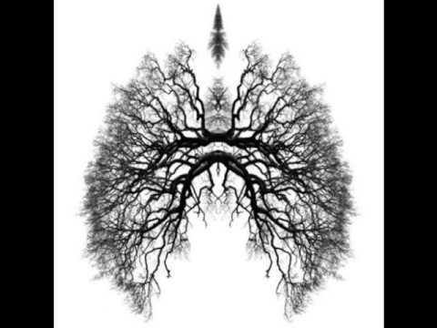 Télépopmusik  Breathe Jawka Remix