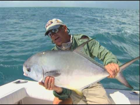 Permit Fishing and Snook Fishing off of Tampa Bay and Marco Island
