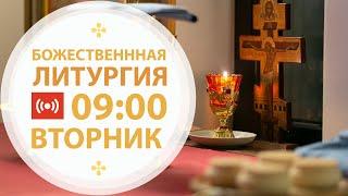 Трансляция: Крещение Господне. Литургия. 19 января 2021 (вторник) 09:00