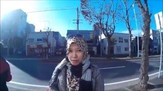 Hokkaido Japan Nov 2015