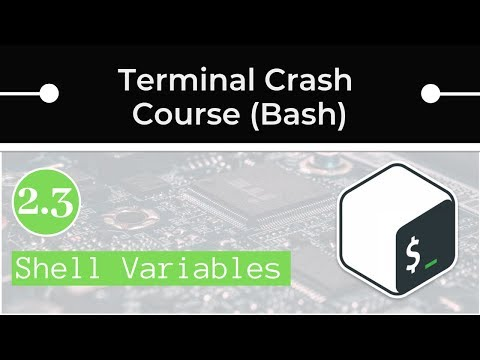 Bash Shell Variables And Aliases (and How To Set Up Your PATH Variable)
