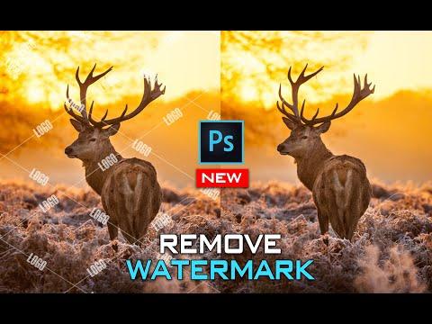 Cách xóa logo watermark bằng Photoshop mới và hiệu quả nhất (Remove watermark logo in Photoshop)