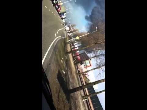 brand westpoort diergaarde
