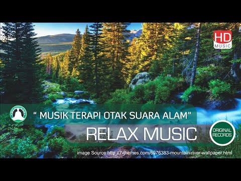 Brain Music Therapy Nature Sounds For Relaxation Mind & disturbances Insomnia