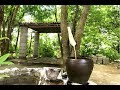Primitive technology  build kitchen roof Roman and collect rain water