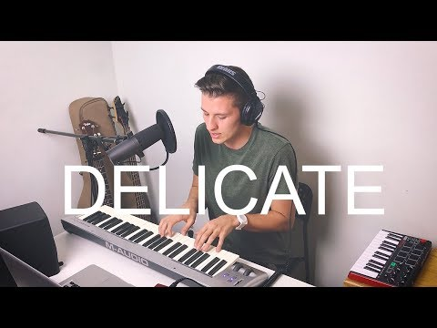 DELICATE // TAYLOR SWIFT COVER // REPUTATION ALBUM