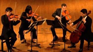 Avalon Quartet - Smetana - String Quartet No. 1 in E minor - I - Allegro vivo appassionato
