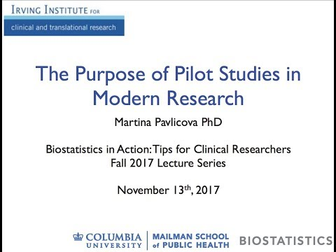 The purpose of pilot studies in modern research