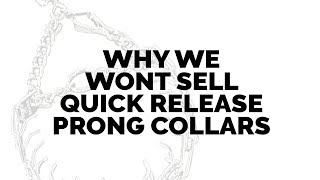 Why Leerburg Will No Longer Sell Quick Release Prong Collars