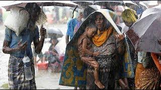 Более 7 тысяч  мусульман-рохинья пострадали в результате муссонных дождей.