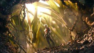 Ant Man Tamil | Ant Man Training Scene Tamil | Ant Man Tamil Scene (2015)