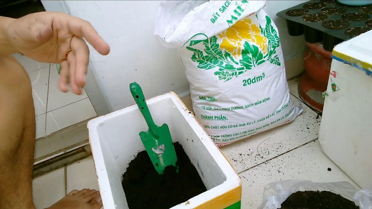 Chuẩn bị đất trồng rau sạch - Ban Công Nhà Đậu