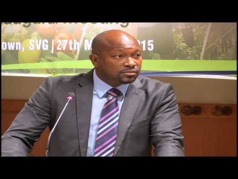 MINISTER OF AGRICULTURE SABOTO CAESAR'S CONTRIBUTION TO THE GEOTHERMAL RESOURCES BILL