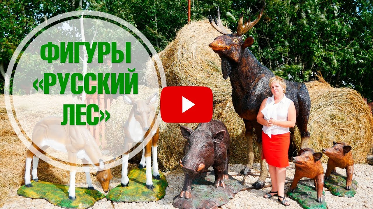 Розы Сибирской селекции - YouTube