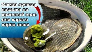 ЛОВИ ПО ХОЛОДНОЙ ВОДЕ НАСАДКА ДЛЯ КРУПНОГО КАРАСЯ и Леща Супер рыболовная насадка
