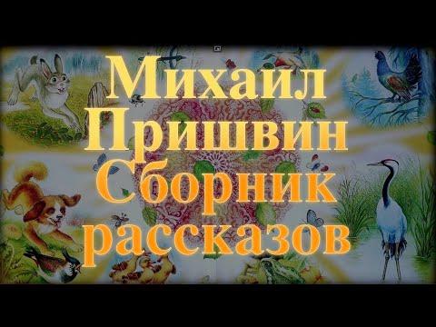 Михаил Пришвин. Сборник рассказов для детей Baby Book Сказки на ночь.Слушать сказки онлайн
