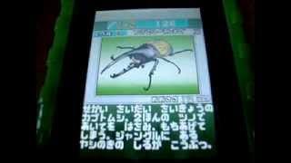 Repeat youtube video 甲虫王者ムシキング虫取りバトル図鑑 虫図鑑の中身を紹介。