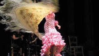 Flamenco Dance ( Amazing performance Male and Female)