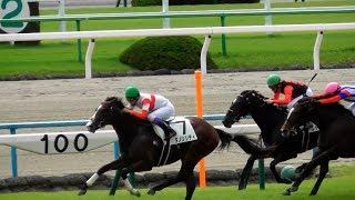 現地映像、ダノンシティ(武豊)が2歳未勝利戦を勝利。京都競馬場 武豊 検索動画 30