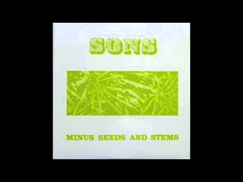 The Sons Of Champlin  - Minus Seeds and Stems