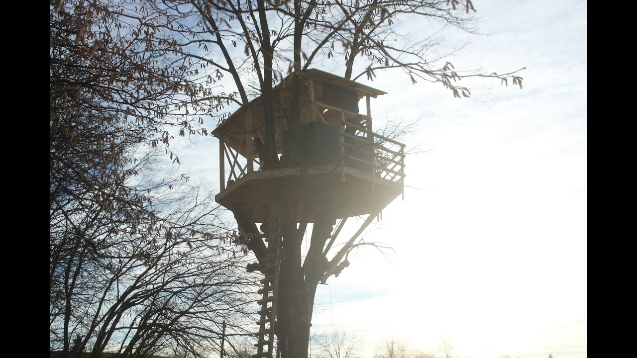 Tree House building an amazing treehouse - youtube
