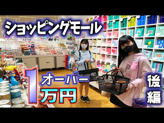 ショッピングモール1万円オーバー姉妹対決!WEGO・GU・H&M  後編【のえのん番組】