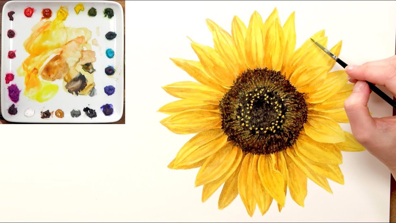 559b32c584a How to paint a realistic sunflower in watercolour with Anna Mason ...