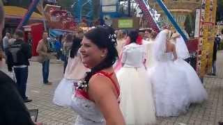 Bride Parade in the City of Kaliningrad - Парад невест, День города, Калининград, 2015