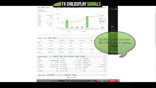 $3,000 turn into over $81,000 in 8 Trading Days